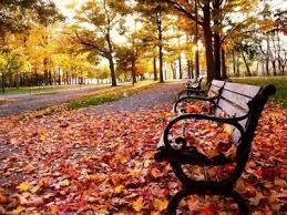 Άρωμα' φθινοπώρου, πέφτει η θερμοκρασία το Σαββατοκύριακο